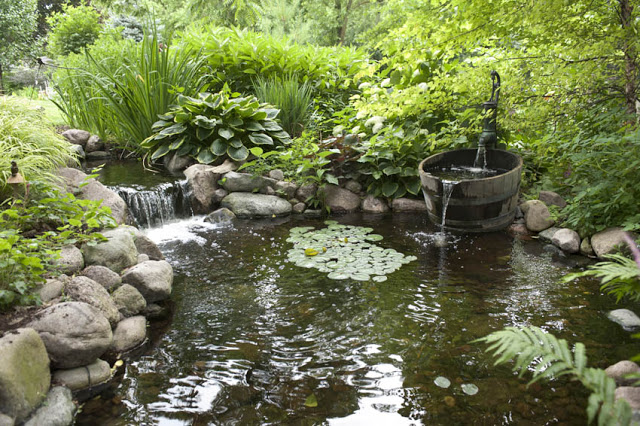 Aquascape-Ecosystem-Pond-2